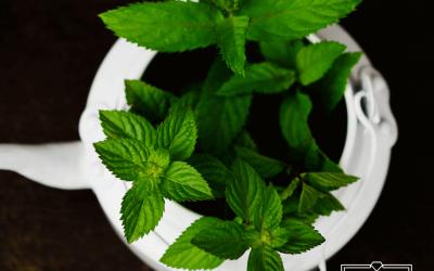 6 aromas que atraen a las mujeres